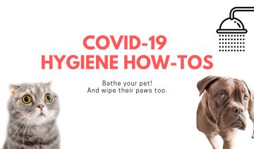 COVID-19 Hygiene How-Tos