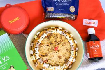 DIY Grain-Free Cake Recipes for Your Pet